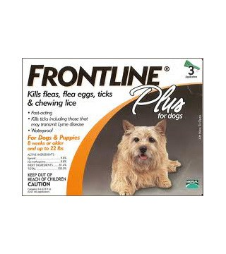 Frontline Plus for Dogs (up to 22 lbs) - 3 Month Pack